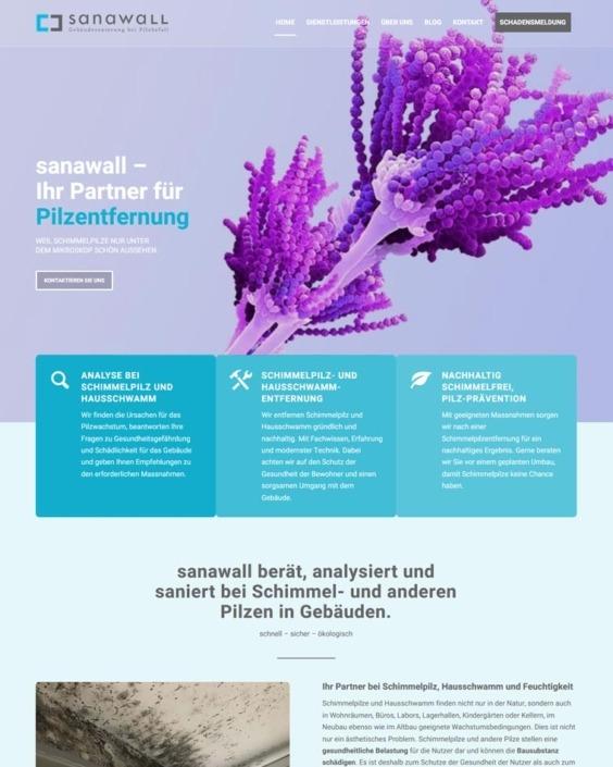 Webdesign Schimmel-entfernen